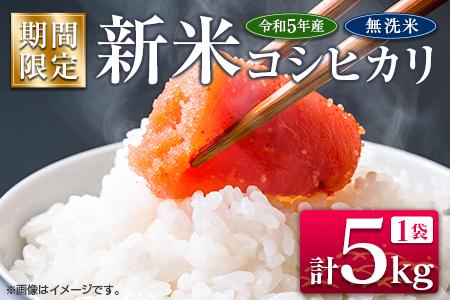 A61-21 期間限定≪無洗米≫新米コシヒカリ計5kg【令和3年産】