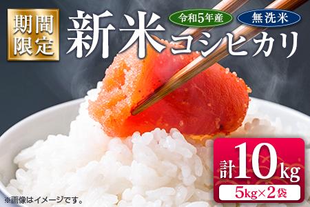 期間限定≪無洗米≫新米コシヒカリ計10kg(5kg×2袋)[令和3年産]
