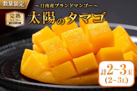 EB4-191 完熟マンゴー「太陽のタマゴ」2~3玉