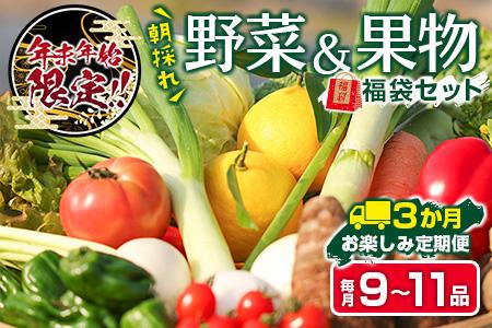 F22-191 ≪3回定期便≫ お楽しみ!!朝採れ野菜・果物詰め合わせ(毎月10~12品)