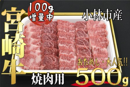【西ノ原牧場直送】小林市産宮崎牛大人気おためし増量焼肉用(500g)