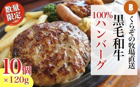 【4個増量中!】倉薗牧場小林市産黒毛和牛100%ハンバーグプラス(計12個)