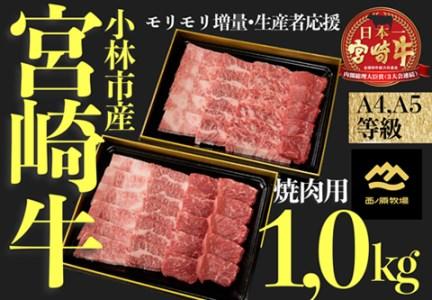 【モリモリ増量・生産者支援】A4等級以上小林市産宮崎牛おためし焼肉 1.0㎏