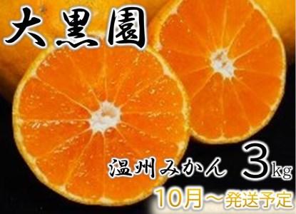 6-01 【数量限定】大黒園の温州みかん 3kg