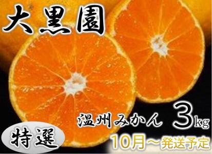 8-02 【特選】大黒園の温州みかん(化粧箱入り) 3kg