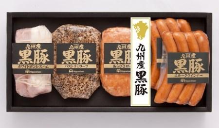 10-10 【南日本ハム(株)】九州産黒豚セット(NO-40)