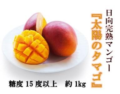 38-01 日向完熟マンゴー(太陽のタマゴ)約1kg