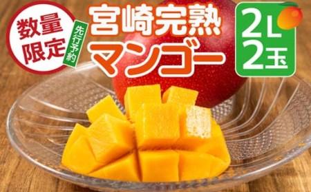 KU019 <数量限定>宮崎完熟マンゴー(2L×2玉) 宮崎県産の完熟マンゴー