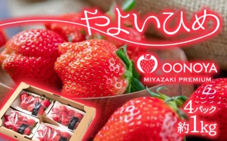 宮崎県西都市 苺 大野屋 やよいひめ 270g×4パック<1.2-4>