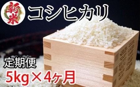 【先行予約】令和3年度産 新米コシヒカリ5kg 4ヶ月定期便 伊東マンショ米<3-34>