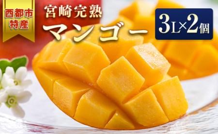 【先行予約】西都市特産 宮崎県産完熟マンゴー3L×2個<1.5-132>
