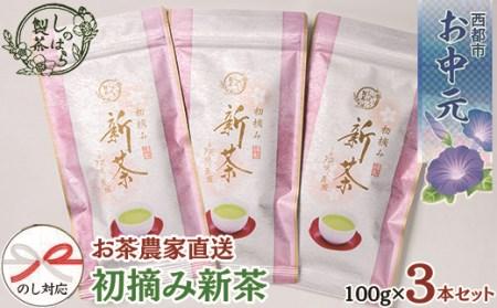 【お中元】お茶農家直送 初摘み新茶3本セット<B1.3-1>