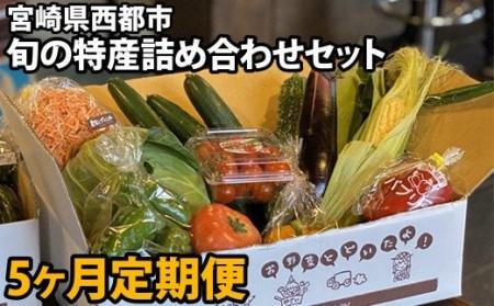 【先行予約】特産野菜詰め合わせセット(5回)<5-13>
