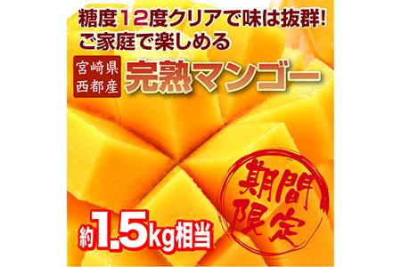 1.5-64  【数量限定】ご家庭で楽しむ西都産完熟マンゴー (JA西都) 約1.5kg入