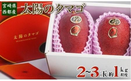 3-18 【数量限定】西都産完熟マンゴー「太陽のタマゴ」(JA西都)