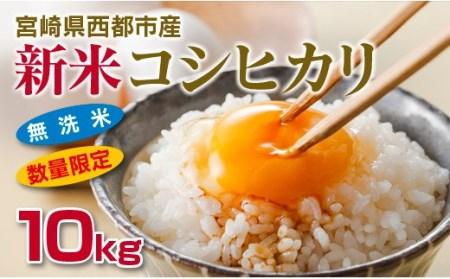 【先行予約】「新米をお届け」 無洗米コシヒカリ10kg 宮崎県西都産 <1.5-30>