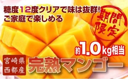 【訳あり‼】ご家庭用  西都産完熟マンゴー (JA西都) 約1kg入<1.5-64>