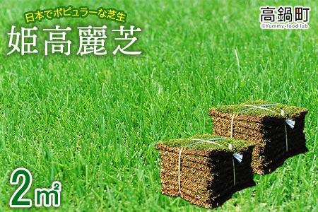 c591_hg <姫高麗芝 2平方メートル>2か月以内に順次出荷