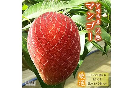 <宮崎県産完熟マンゴー (Lサイズ3個 or 2Lサイズ2個)>2021年4月初旬~6月末迄に順次出荷【c298_my_x2】