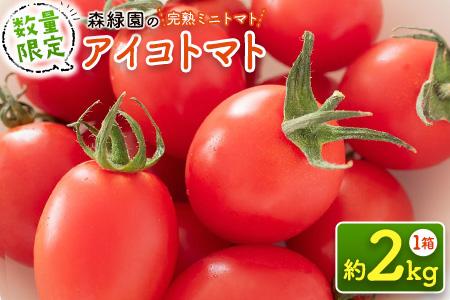 【完熟ミニトマト】新鮮アイコトマト 2kg ※2020年11月下旬~2021年5月の収穫期間内出荷【A83】