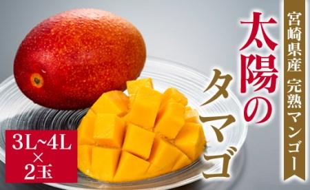 [先行予約]宮崎県産完熟マンゴー「太陽のタマゴ」×2玉(3L~4L)◆2021年5月中旬~7月末まで出荷【D71】