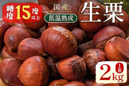 宮崎県産 低温熟成 生栗 2kg【C327】