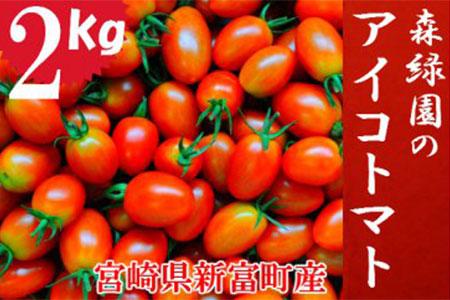 予約受付【完熟ミニトマト】アイコトマト2kg【A83-01】