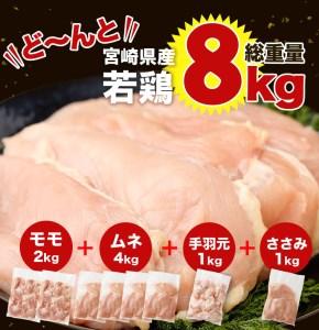 <宮崎県産若鶏8kgセット>※60日以内に出荷【B251】