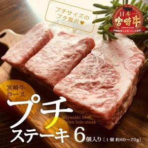 宮崎牛ロースのプチステーキ 6個入り【B248】