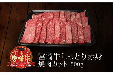 <宮崎牛>しっとり赤身焼肉 500g【B217】