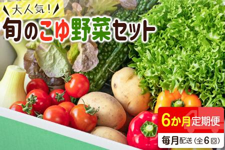 野菜ソムリエが選ぶ<旬のこゆ野菜セット 6ヵ月コース 定期便>【C77】