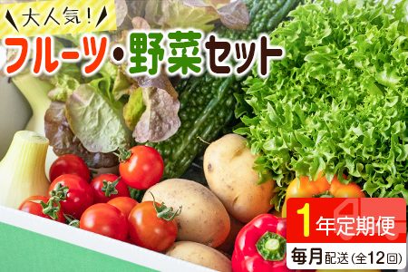 野菜ソムリエが選ぶ<旬のこゆ野菜セット 12ヵ月コース 定期便>【D17】