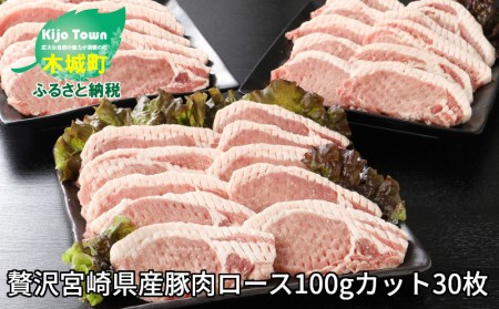 e093_sn <贅沢宮崎県産豚肉ロース100gカット30枚>2020年3月末迄に順次出荷