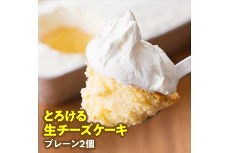 i2703とろける生チーズケーキ(プレーン2個)