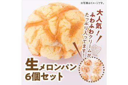 i2706『押川春月堂本店』生メロンパン6個