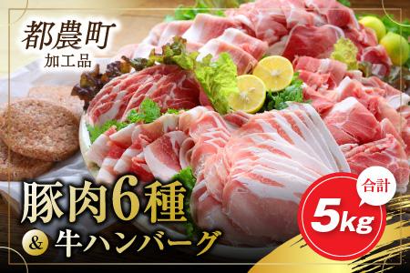 AC36-3MR37 お楽しみ『豚肉6種&牛ハンバーグセット』合計5kg(都農町加工品)