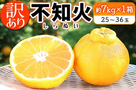A453-R2 【訳あり】『不知火(しらぬい)』約7kg(都農町産)