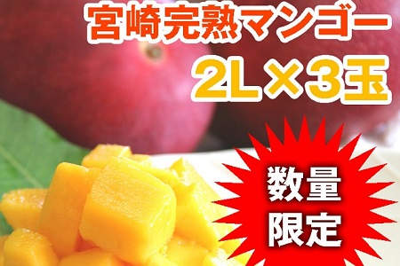 AE3 ★日本のひなた★宮崎【完熟】マンゴー2玉!!