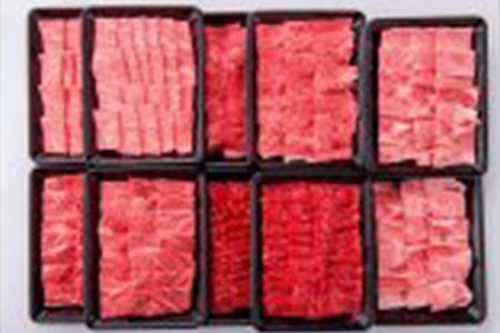 E3 宮崎牛部位食べ比べ焼肉セット