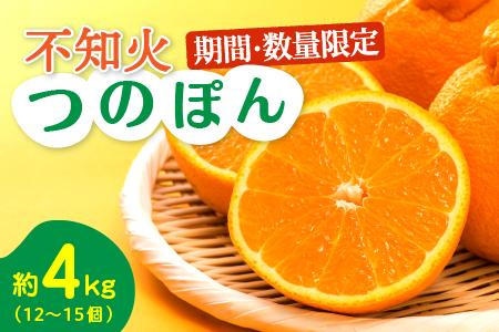 AA46-R3 《期間・数量限定》不知火『つのぽん』約4kg(都農町産) フルーツ 果物 みかん