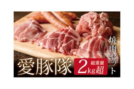 A377 宮崎ブランドポーク「愛豚隊」焼肉セット
