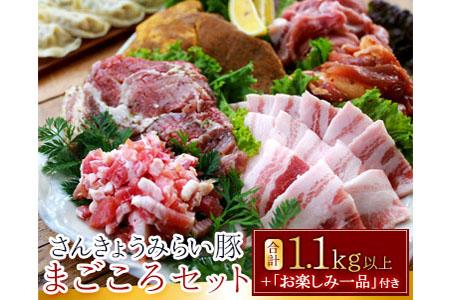 A384 さんきょうみらい豚まごころセット(合計1.1kg以上)