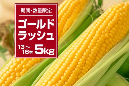 A399 『期間・数量限定』黄金の輝き★『ゴールドラッシュ』5kg(都農町産)