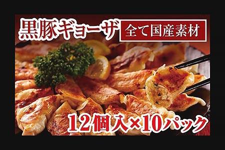 653 肉汁たっぷり!鹿児島県産黒豚ギョーザ10パック