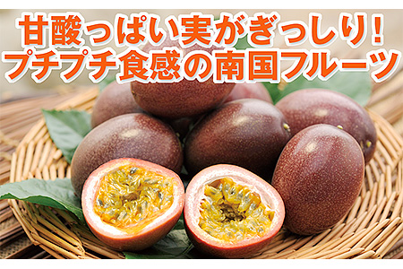 A5-2293/甘酸っぱい香りとプチプチ食感が魅力の国産パッションフルーツ約1kg【限定200セット】