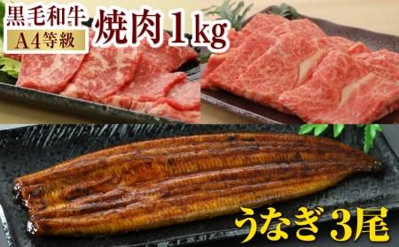 E5-2202/黒毛和牛カルビ2種1kg&特上うなぎ3尾