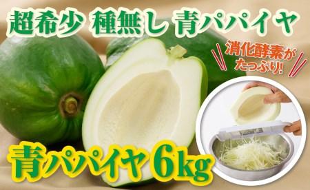 A1-2278/酵素や栄養たっぷり!【健康食材】青パパイヤ