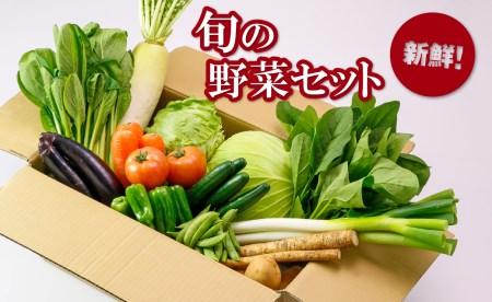 A1-22112/季節のとれたて野菜セット