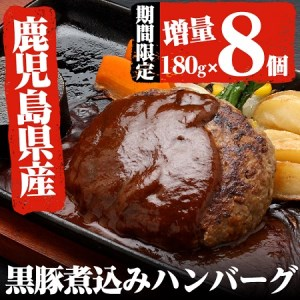 A-372 【年末年始限定増量】鹿児島県産黒豚煮込みハンバーグ6個+2個