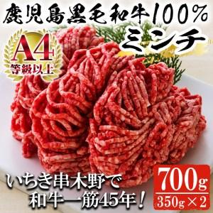 A-676 鹿児島県産黒毛和牛100%ミンチ(約350g×2パック・約700g)